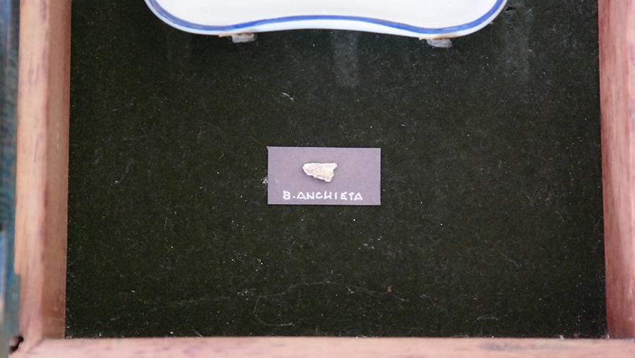 Fragmento do Osso de São José de Anchieta