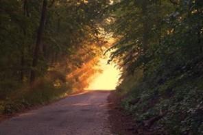 Espiritualidades como Caminho e Mistério