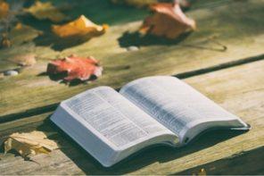 Novelas Bíblicas: Rute, Judite, Ester e Jonas