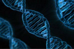 A Bioética e as Ameaças à Vida Humana