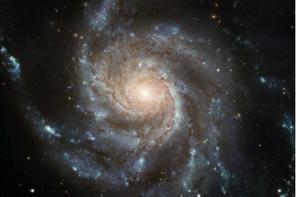 A Evolução e o Conceito Cristão de Criação discutidos em seminário
