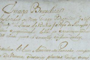 Café com Arte apresenta Manuscrito Jesuítico Raro que revela medicina praticada no Brasil no Século XVIII