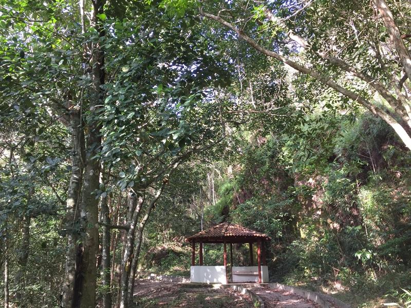 Na casa de retiros há uma pequena trilha, ideal para a contemplação da natureza e momentos de oração ao ar livre.